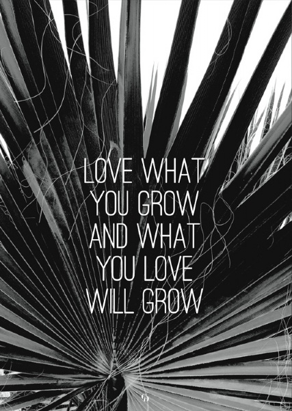 Love What You Grow